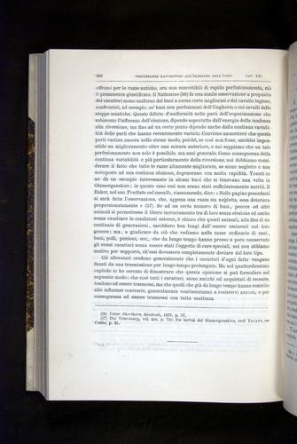 Image of Darwin-F920-1876-582