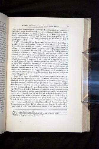 Image of Darwin-F920-1876-587