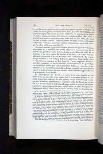 Image of Darwin-F920-1876-594