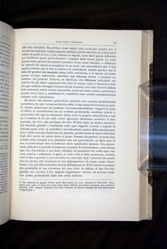 Image of Darwin-F920-1876-595