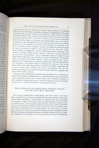 Image of Darwin-F920-1876-597