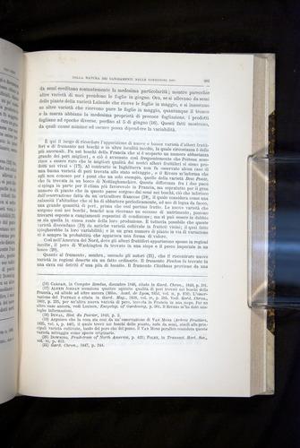 Image of Darwin-F920-1876-601