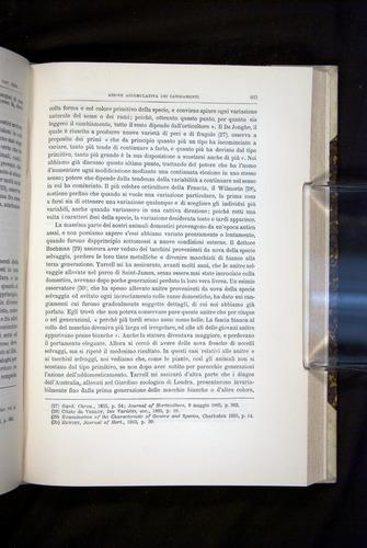 Image of Darwin-F920-1876-603