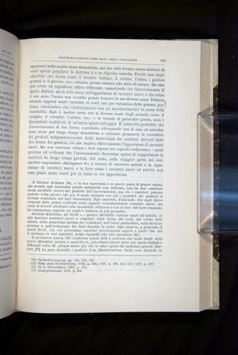 Image of Darwin-F920-1876-605