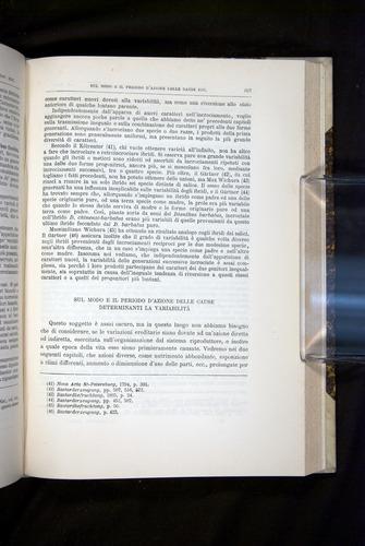 Image of Darwin-F920-1876-607