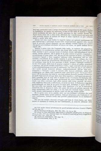 Image of Darwin-F920-1876-618