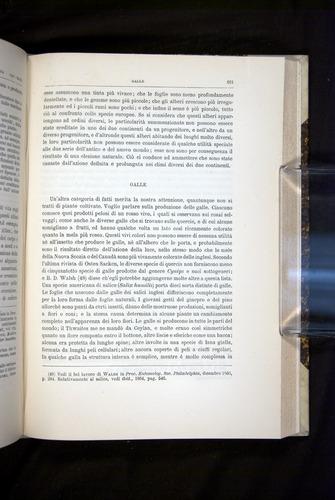 Image of Darwin-F920-1876-621