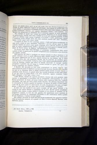 Image of Darwin-F920-1876-625
