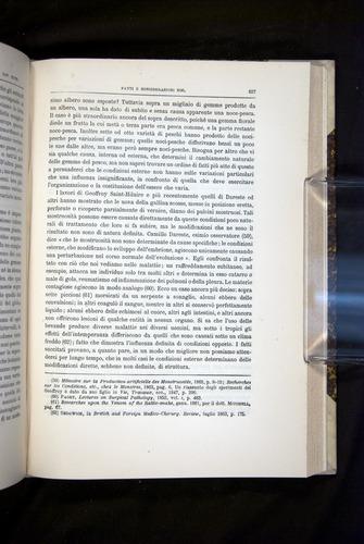 Image of Darwin-F920-1876-627