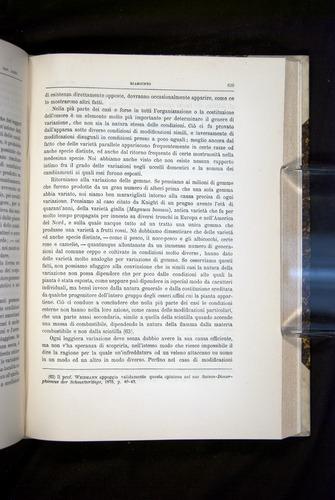 Image of Darwin-F920-1876-629