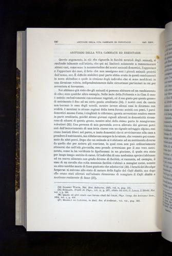 Image of Darwin-F920-1876-640