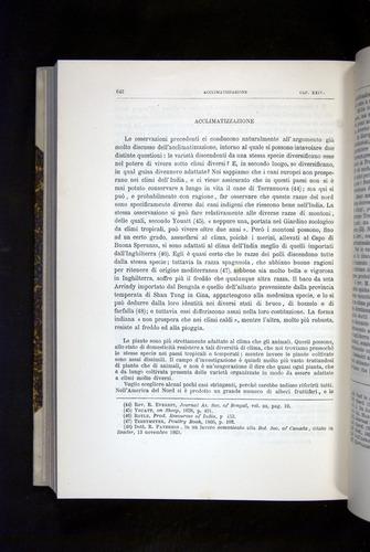 Image of Darwin-F920-1876-642