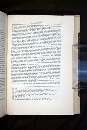 Image of Darwin-F920-1876-643
