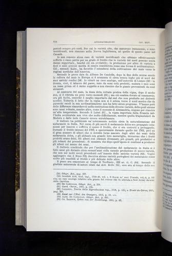 Image of Darwin-F920-1876-644