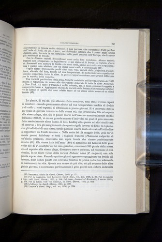 Image of Darwin-F920-1876-645