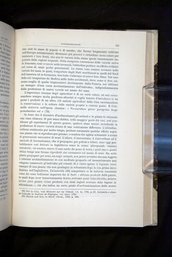 Image of Darwin-F920-1876-649