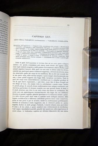 Image of Darwin-F920-1876-655