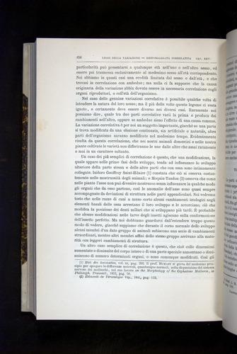 Image of Darwin-F920-1876-656