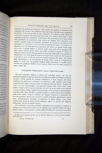 Image of Darwin-F920-1876-657