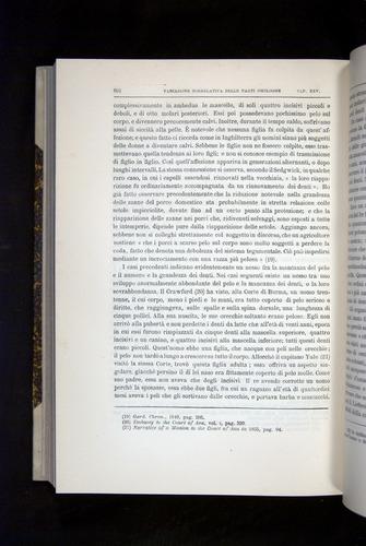 Image of Darwin-F920-1876-662