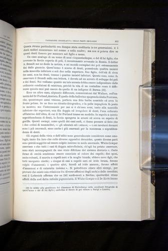 Image of Darwin-F920-1876-663