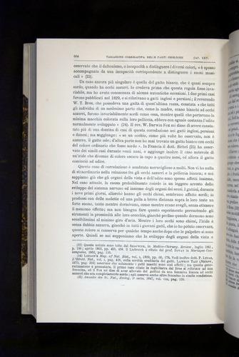 Image of Darwin-F920-1876-664