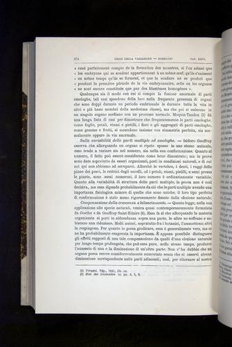Image of Darwin-F920-1876-674