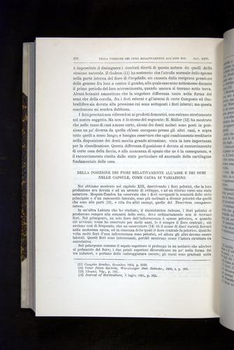 Image of Darwin-F920-1876-676