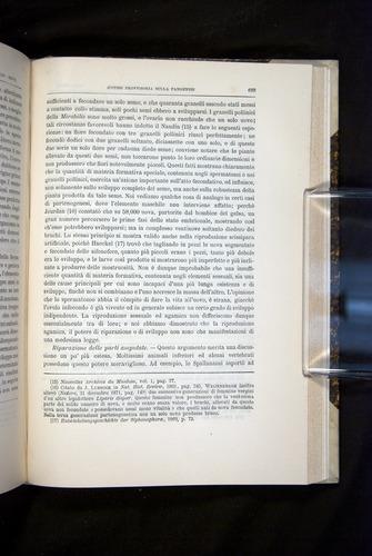 Image of Darwin-F920-1876-693