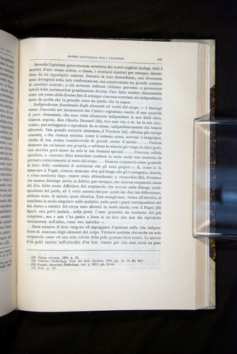 Image of Darwin-F920-1876-699