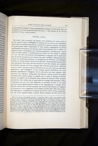 Image of Darwin-F920-1876-703