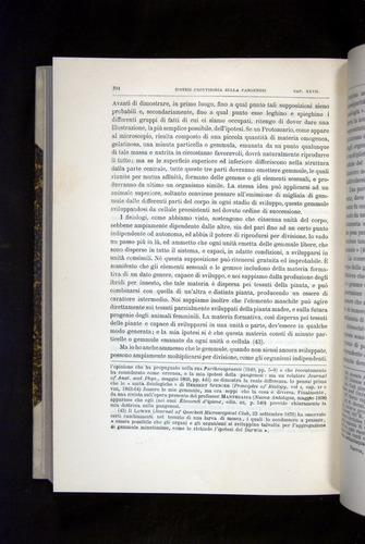 Image of Darwin-F920-1876-704