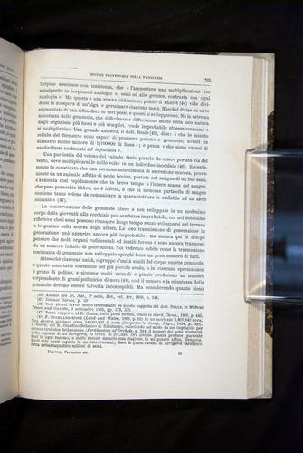 Image of Darwin-F920-1876-705