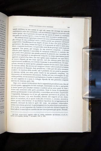 Image of Darwin-F920-1876-709