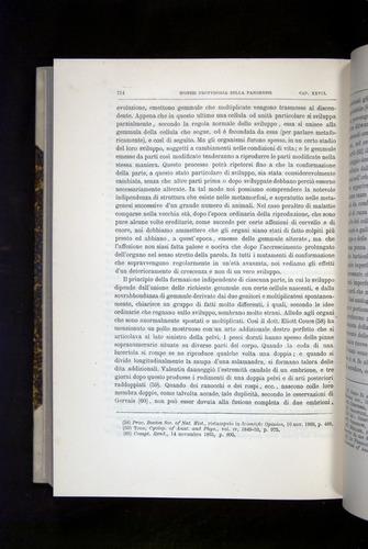 Image of Darwin-F920-1876-714