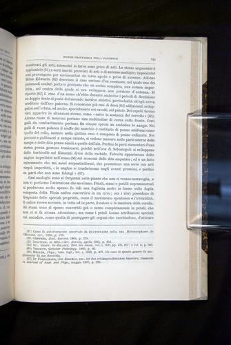 Image of Darwin-F920-1876-715