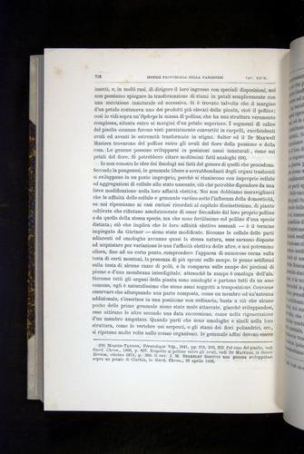 Image of Darwin-F920-1876-716