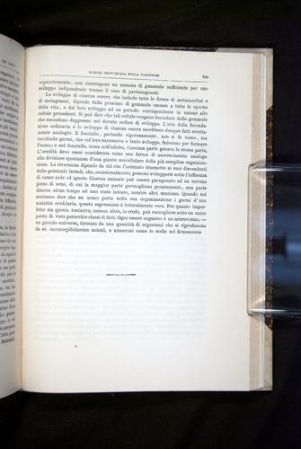 Image of Darwin-F920-1876-725