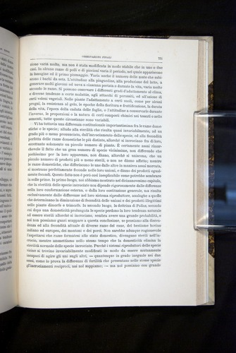 Image of Darwin-F920-1876-731