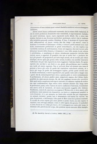 Image of Darwin-F920-1876-736
