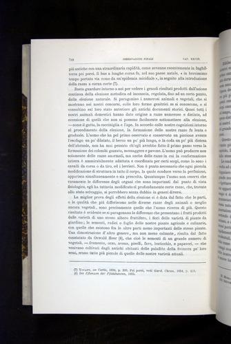 Image of Darwin-F920-1876-744