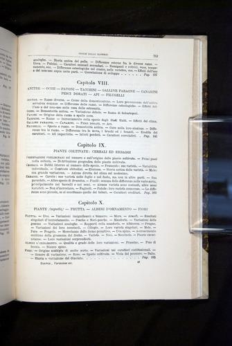 Image of Darwin-F920-1876-753