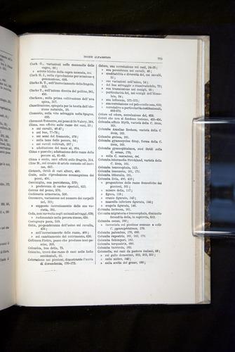 Image of Darwin-F920-1876-773
