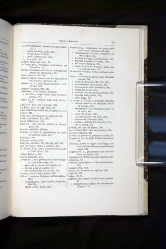 Image of Darwin-F920-1876-793