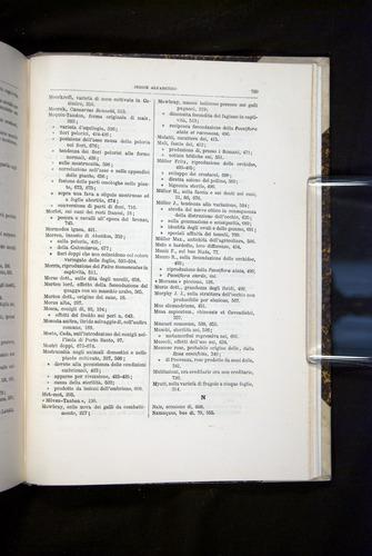 Image of Darwin-F920-1876-799
