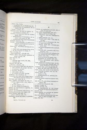 Image of Darwin-F920-1876-801