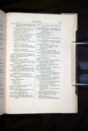 Image of Darwin-F920-1876-803