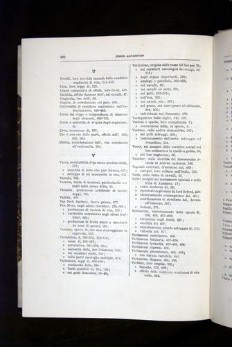 Image of Darwin-F920-1876-820