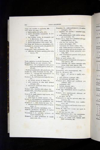 Image of Darwin-F920-1876-822