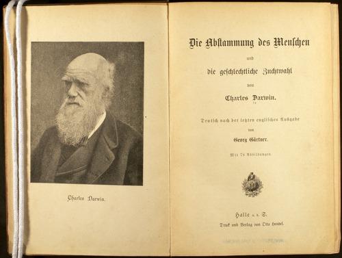 Image of Darwin-F1070-1893-000-fp-tp